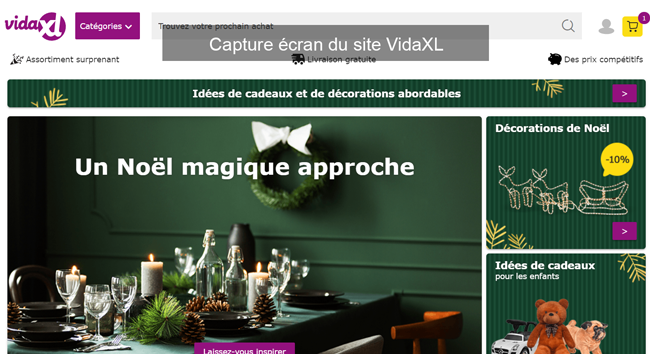 commander sur le site VidaXL.fr